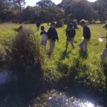 Eco Adventurers At Cape Town Schools - Learning experiences